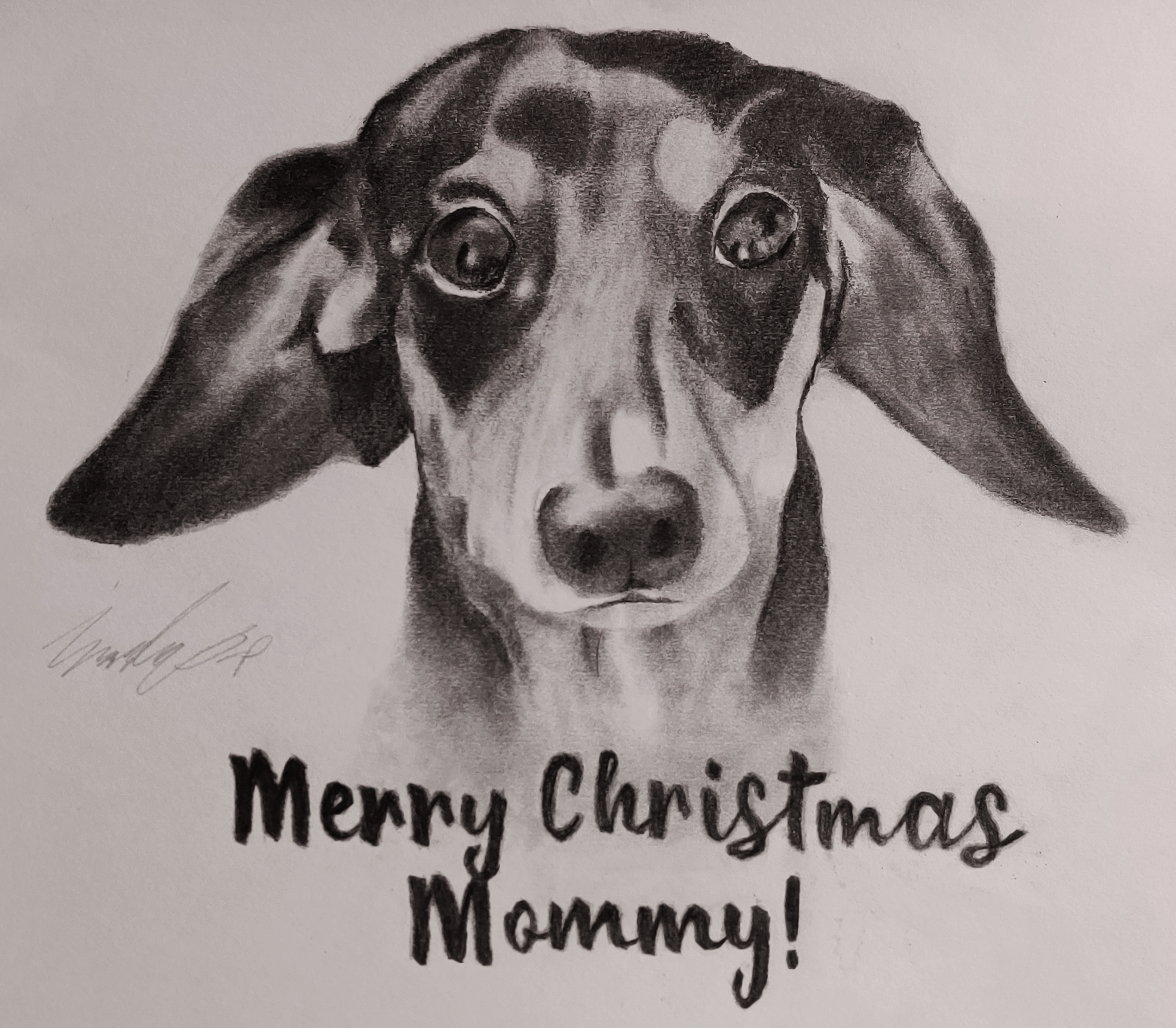 A pencil drawing of Khiron, my puppy, for my mom for Christmas 2019.